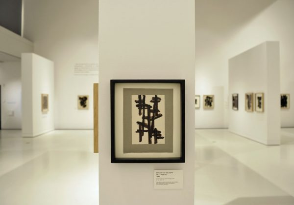 EXPO-SOULAGES-RODEZ-005